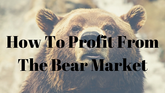 How To Profit From The Bear Market